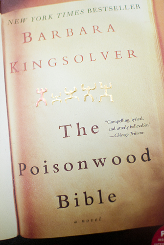 barbara kingsolver and the poisonwood bible critical essay The poisonwood bible literature essays are academic essays for citation these papers were written primarily by students and provide critical analysis of the poisonwood bible point of view and narration in kingsolver's the poisonwood bible.